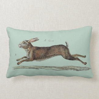 The Racing Hare at Easter Throw Pillows