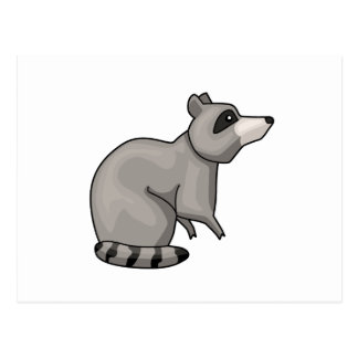The Racoon Postcard