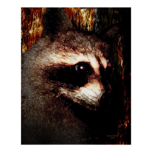 The Racoon Poster