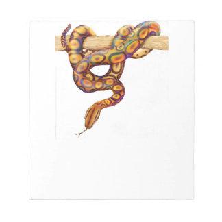 The Rainbow Boa Snake Notepad