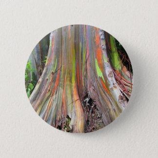 The Rainbow Eucalyptus Tree Products Pinback Button