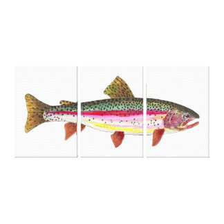 The Rainbow Trout Gallery Wrapped Canvas