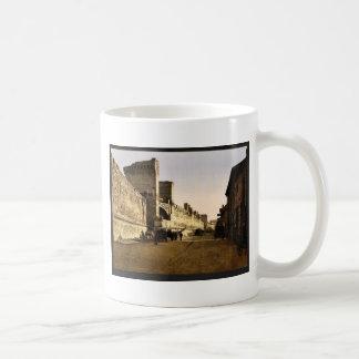 The ramparts, Avignon, Provence, France classic Ph Coffee Mugs