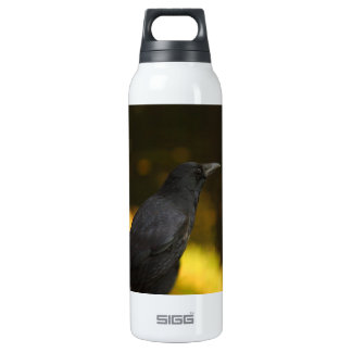 the raven 16 oz insulated SIGG thermos water bottle