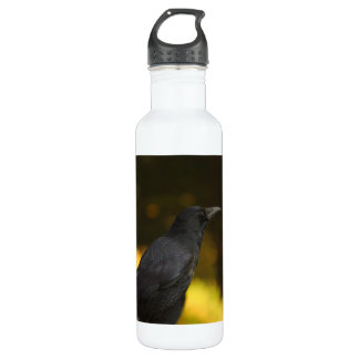 the raven 24oz water bottle