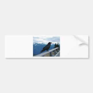 The Raven Bumper Sticker