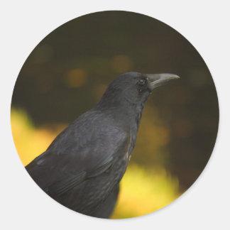the raven classic round sticker