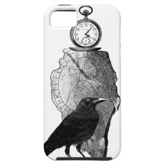 The Raven, Crow and runestone iPhone 5 Cover