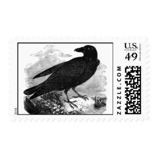 The Raven Vintage Stamp