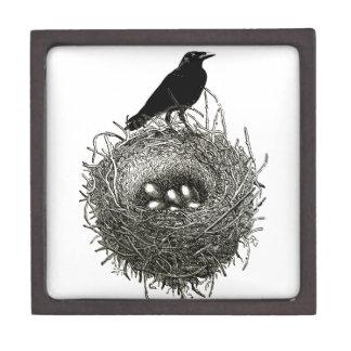 The Raven's Nest Premium Keepsake Box
