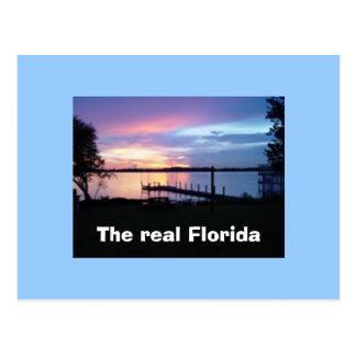 The real Florida postcard