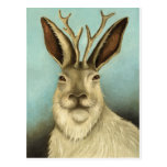The Real Jackalope Postcard