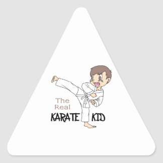 THE REAL KARATE KID TRIANGLE STICKERS