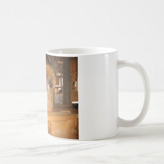 """the real money's in alpacas"" coffee mug"