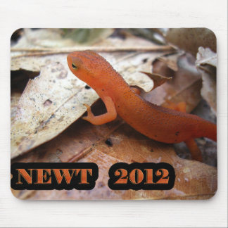 The REAL Newt Mouse Pad