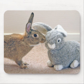 The Real Rabbit Mousepads