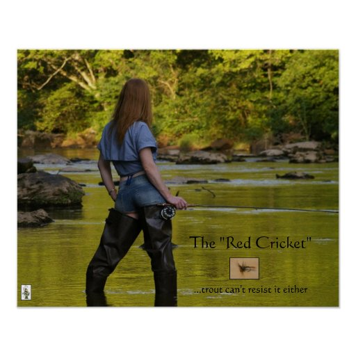 The Red Cricket-trout cant resist Poster