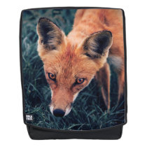 The Red Fox Backpack