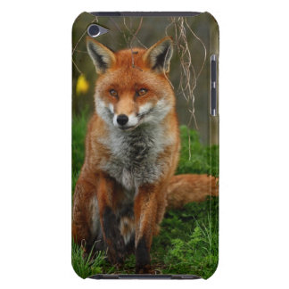 The Red Fox Barely There iPod Covers