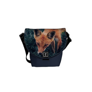 The Red Fox Courier Bag