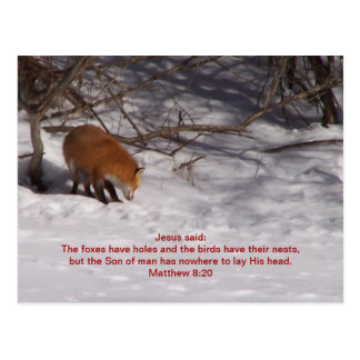 The Red Fox Post Cards