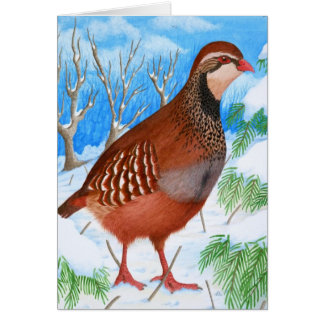 The Red-Legged Partridge Greeting Card