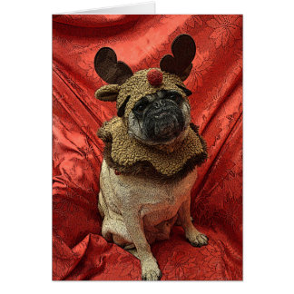 the Red Nose Pug Card