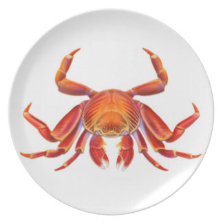 The Red Sally Lightfoot Crab Plate