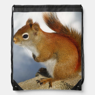The Red Squirrel Who Stuck Around Drawstring Bag