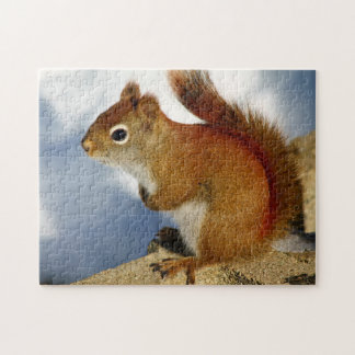 The Red Squirrel Who Stuck Around Jigsaw Puzzle