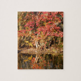 The Red Tree at Sunset Jigsaw Puzzle