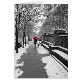 The Red Umbrella