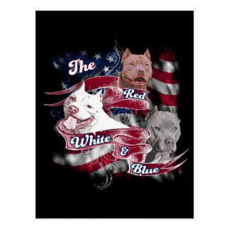 The Red, White & Blue Pitbull Dogs Post Cards