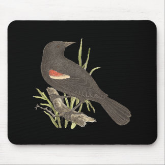 The Red-winged Oriole	(Icterus phoeniceus) Mouse Pad