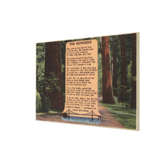 The Redwood Highway, Poem by Strauss Canvas Prints