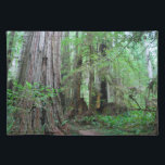 "The Redwoods - Sequoia Cloth Placemat<br><div class=""desc"">The three redwood subfamily genera are Sequoia and Sequoiadendron of California and Oregon, United States; and Metasequoia in China. The redwood species contains the largest and tallest trees in the world. These trees can live thousands of years. Only two of the genera, Sequoia and Sequoiadendron, are known for massive trees....</div>"