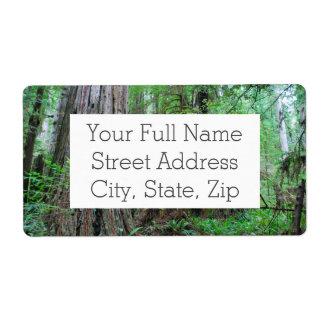 The Redwoods - Sequoia Label