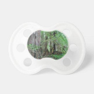 The Redwoods - Sequoia Pacifier