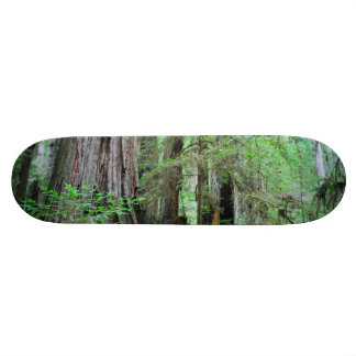 The Redwoods - Sequoia Skateboard