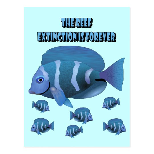 The Reef Postcard