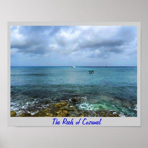 The reefs of Cozumel Poster