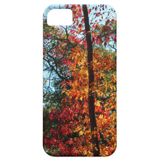 The Renegade's Heart iPhone SE/5/5s Case