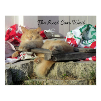 The Rest of the Work Can Wait - It's Time For REST Postcard