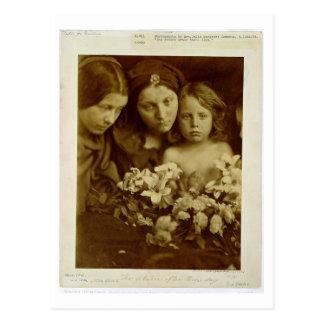 The Return after Three Days, c.1865 (sepia photo) Postcard