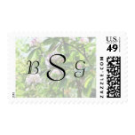 The Rhododendrons Are in Bloom Wedding Products Postage