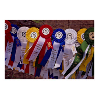 The Ribbons Poster
