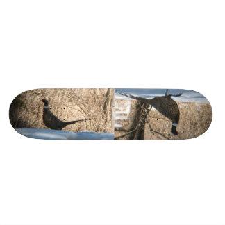 The Ring Neck Pheasants Skateboard