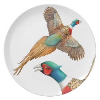 The Ring Necked Pheasant  Plate