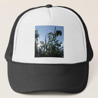 The Rising Ash Trucker Hat