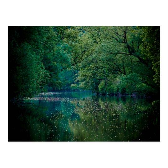 The River • Postcard